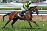 Friday Night Moonee Valley – 2011 Alister Clark Stakes Tips