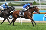 Doncaster Mile Hopefuls Gallop at Rosehill & Connections Discuss Barriers