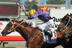 2011 Liverpool City Cup Form Guide & Betting – Chipping Norton Stakes Day Fields