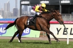 Let's Make Adeal Runs in 2015 Moonee Valley Gold Cup Field