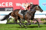 TJ Smith Stakes 2013 Field & Barriers – Rails Draw and 10 Rivals for Black Caviar