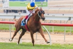 Eight Confirmed for 2014 Skyline Stakes
