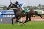 Opinion Tops Moonee Valley Gold Cup 2014 Odds
