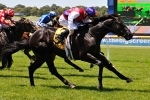 Atomic Gains Momentum for 2011 Blue Diamond Stakes Upset